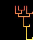 Logo_PhylEvolMol_1.0